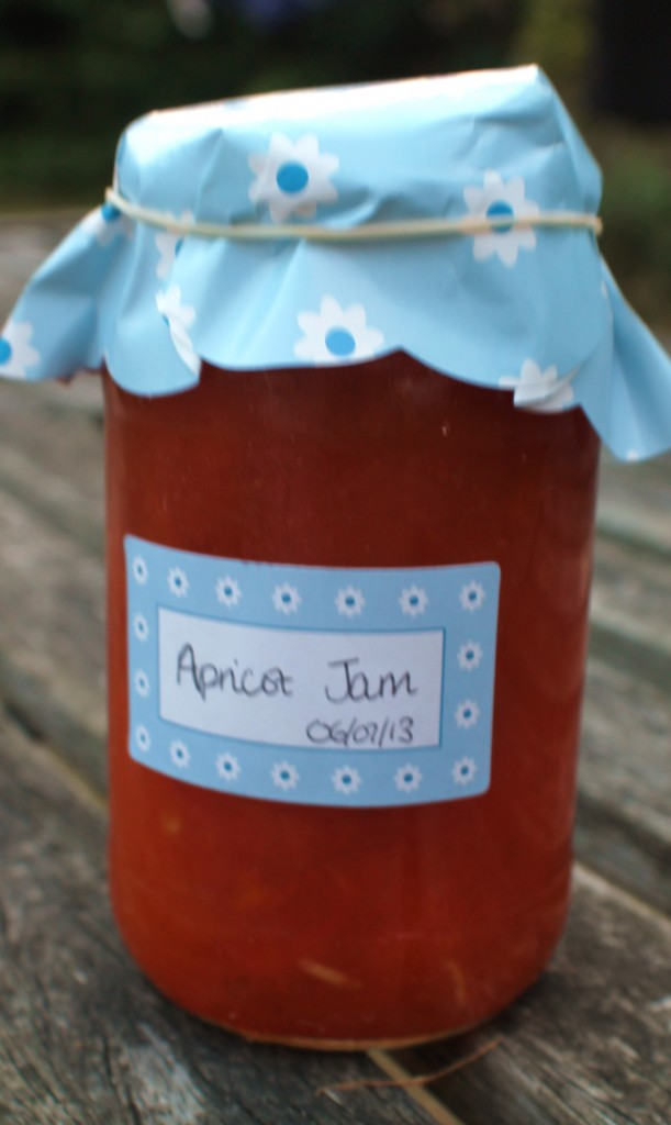 Apricot and Ginger Jam